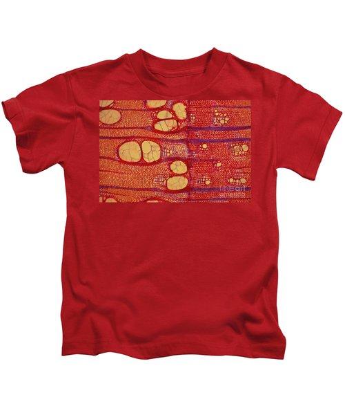Black Locust Tree Vessels Kids T-Shirt