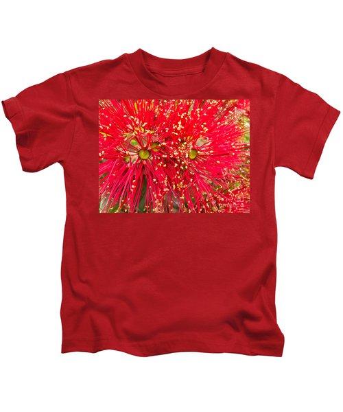 Closeup Blossoms Of Nz Christmas Tree Pohutukawa Kids T-Shirt
