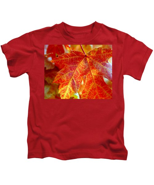 Autumn Blaze Kids T-Shirt