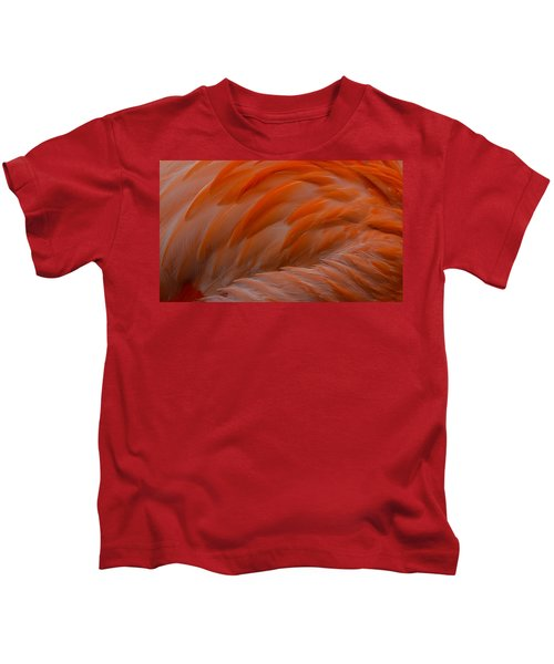 Flamingo Feathers Kids T-Shirt