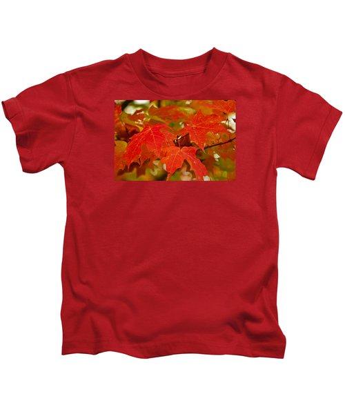 Ravishing Fall Kids T-Shirt