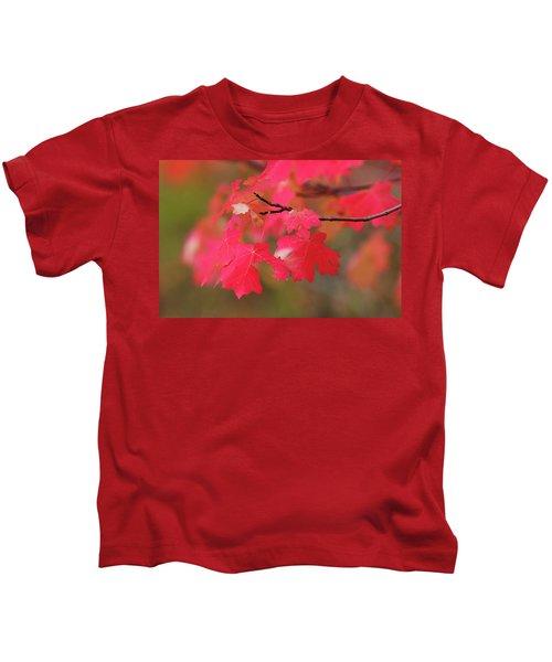 A Flash Of Autumn Kids T-Shirt