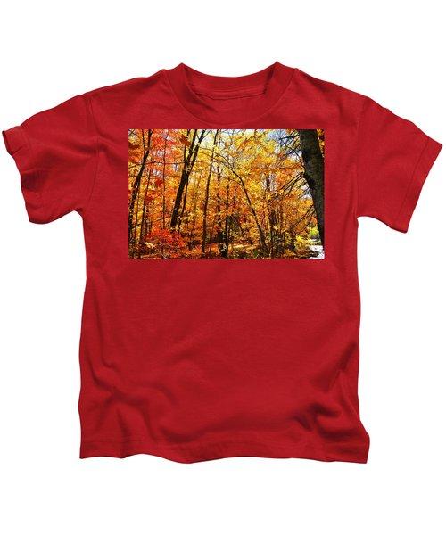 Autumn Colors Kids T-Shirt