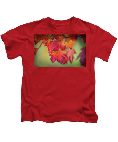 Close-up Of Red Maple Leaves In Autumn Kids T-Shirt