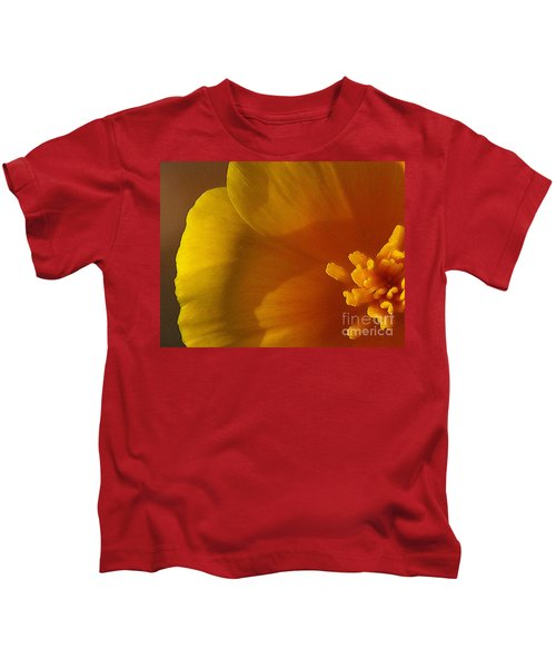 Copa De Oro - Subdued  Kids T-Shirt