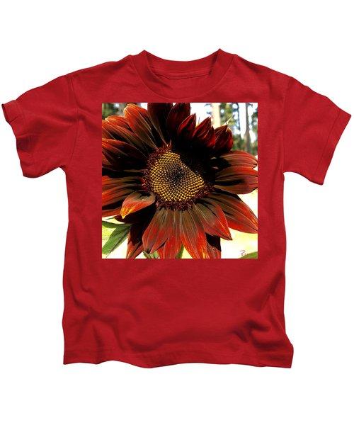 Fibonacci Hues Kids T-Shirt