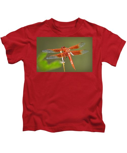 Flame Skimmer Kids T-Shirt