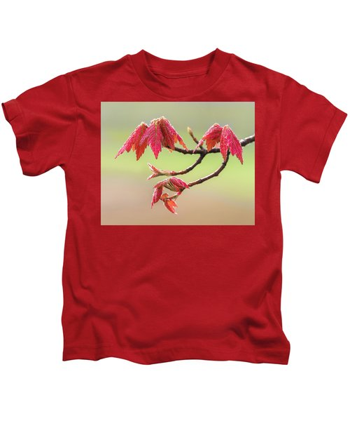 Frosty Maple Leaves Kids T-Shirt