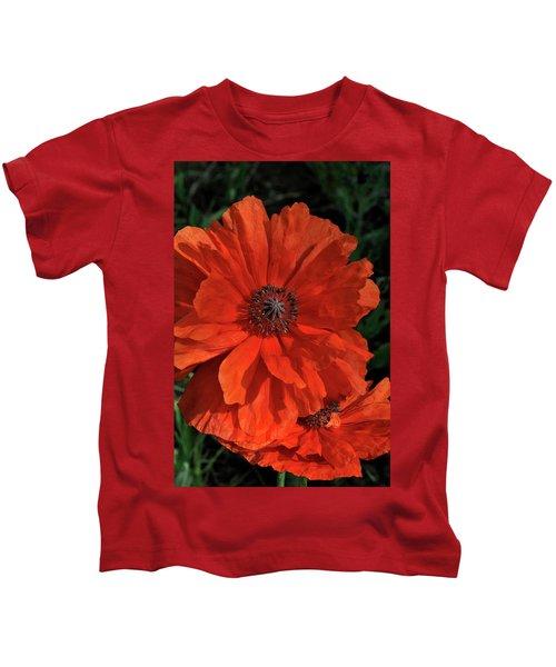 Giant Mountain Poppy Kids T-Shirt