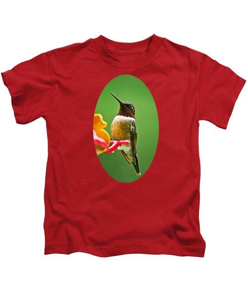 Rainy Day Hummingbird Kids T-Shirt by Christina Rollo