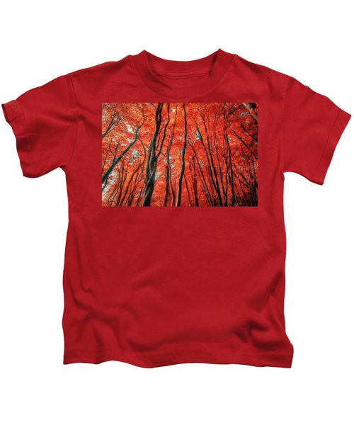 Red Forest Of Sunlight Kids T-Shirt
