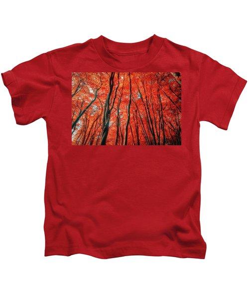 Red Forest Of Sunlight Kids T-Shirt