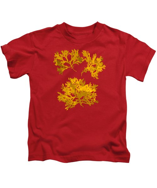 Kids T-Shirt featuring the mixed media Yellow Gold Seaweed Art Delesseria Alata by Christina Rollo