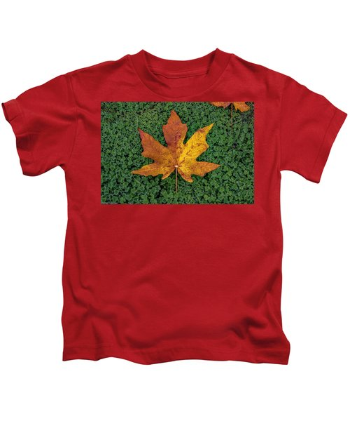 Clover Leaf Autumn Kids T-Shirt