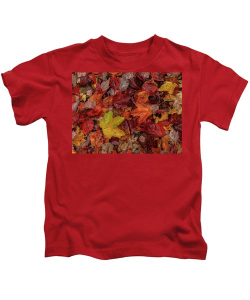 Fall Colors Kids T-Shirt