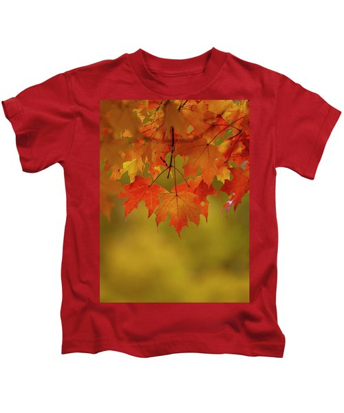 Fall Leaves Kids T-Shirt