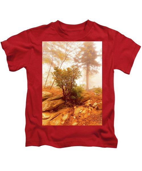 Manzanita In Light Kids T-Shirt