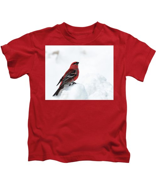 Pine Grosbeak In The Snow Kids T-Shirt