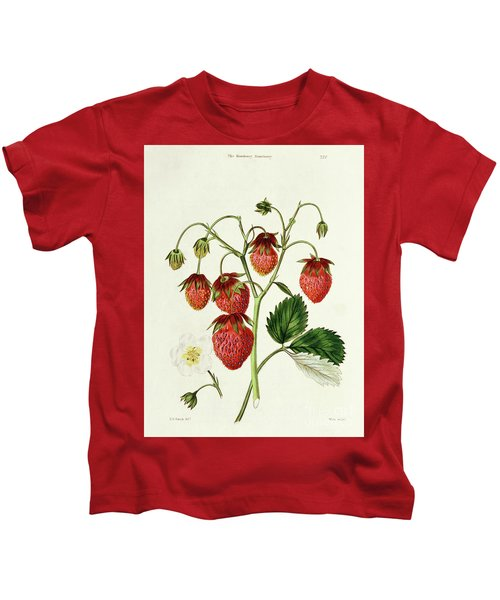 The Roseberry Strawberry, Engraved By Watte Kids T-Shirt