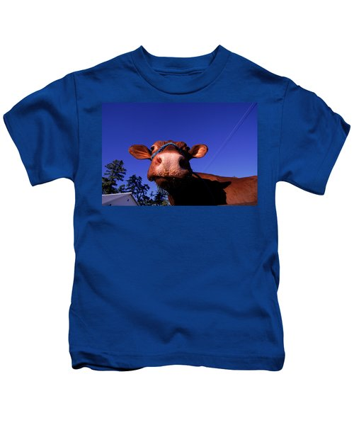 A Close Up Of The Face Of A Cow, Maine Kids T-Shirt