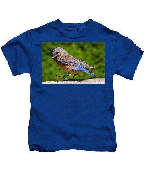 Dancing Western Bluebird  Kids T-Shirt