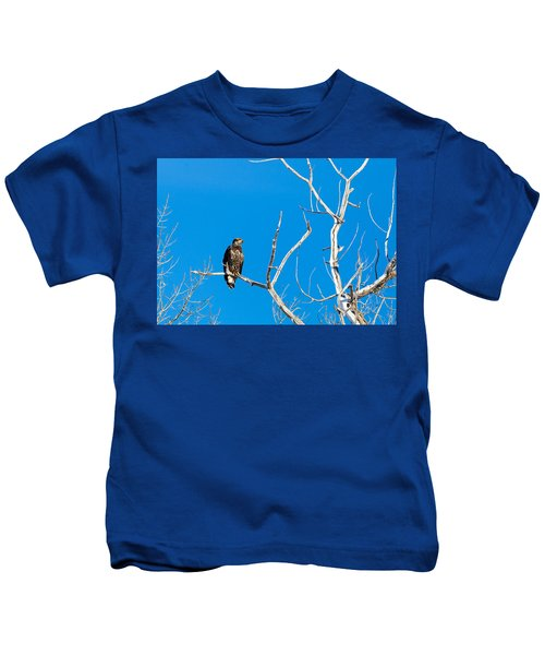 Immature Bald Eagle Kids T-Shirt