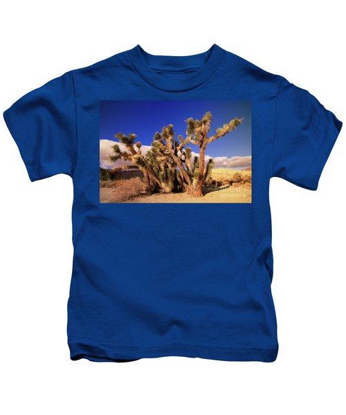 Joshua Tree Morning In Red Rock Canyon Kids T-Shirt