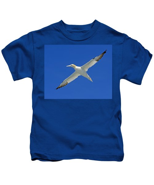 Northern Gannet Kids T-Shirt by Tony Beck