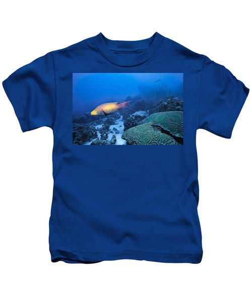 The Spanish Hog Snapper Kids T-Shirt