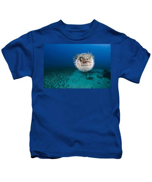Spotted Porcupinefish II Kids T-Shirt