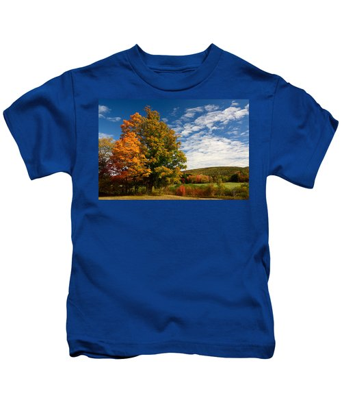 Autumn Tree On The Windham Path Kids T-Shirt