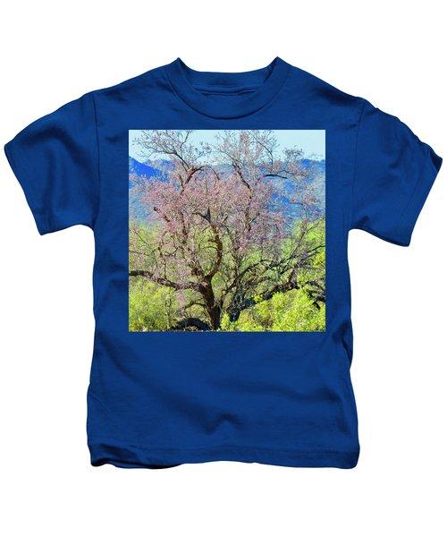 Desert Ironwood Beauty Kids T-Shirt