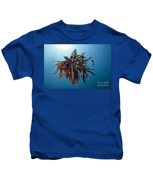 Feather Star Kids T-Shirt