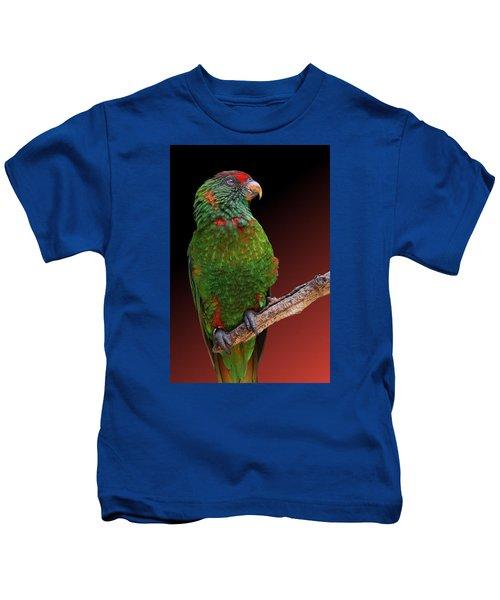 Lorikeet Portrait Kids T-Shirt