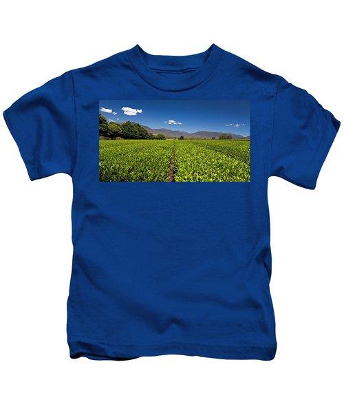 Ready For Harvest Kids T-Shirt