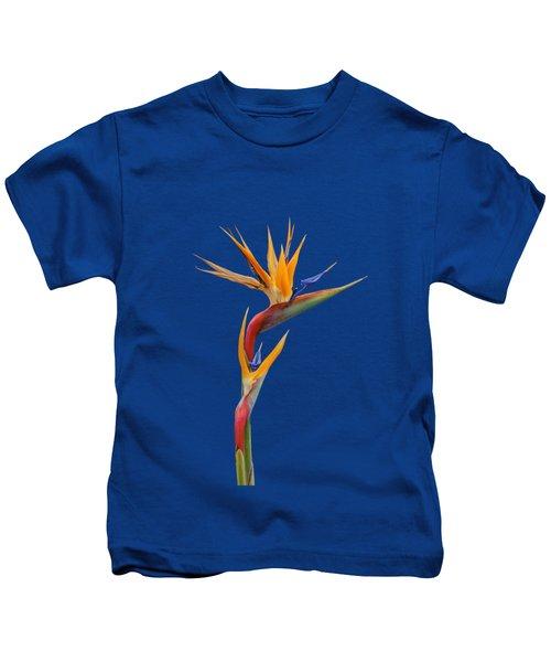 Bird Of Paradise - Flower - Transparent Kids T-Shirt