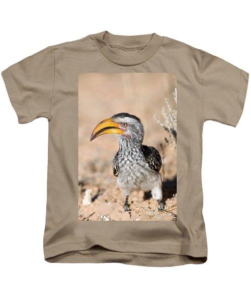 Southern Yellow-billed Hornbill Kids T-Shirt