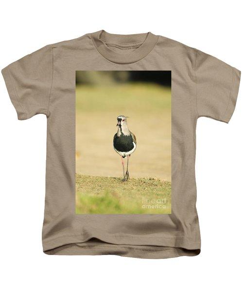 Southern Lapwing Kids T-Shirt