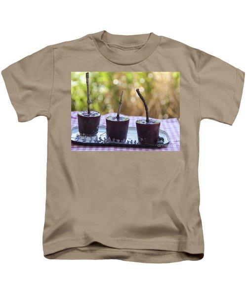 Blueberry Ice Pops Kids T-Shirt by Juli Scalzi