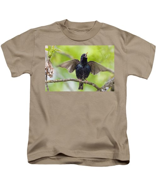 Common Starling Singing Bavaria Kids T-Shirt by Konrad Wothe