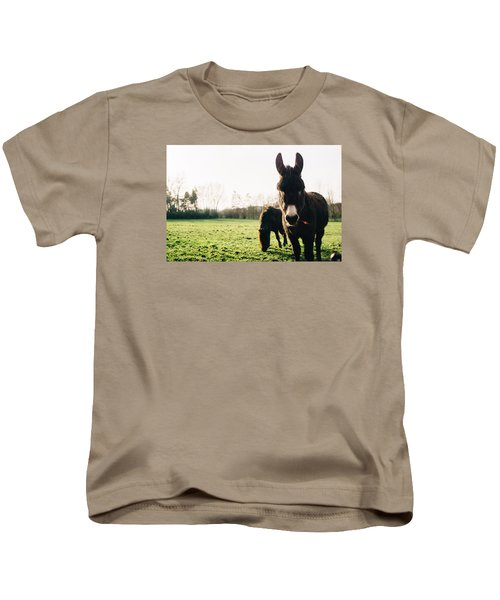 Donkey And Pony Kids T-Shirt by Pati Photography
