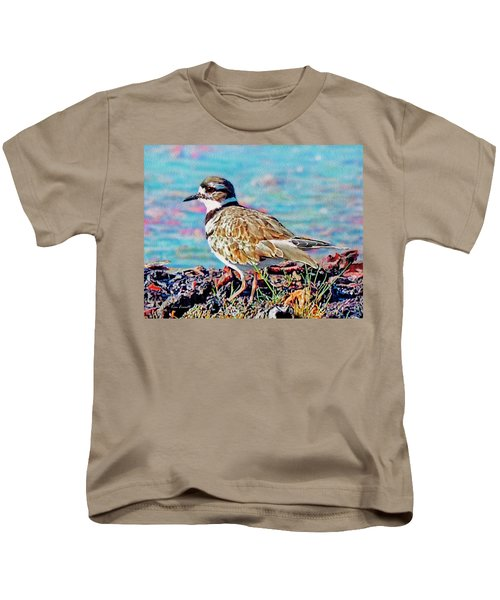 Killdeer  Kids T-Shirt by Ken Everett