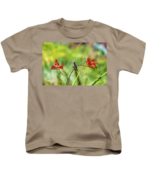 Male Young Hummingbird Perched Kids T-Shirt