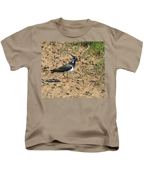 Northern Lapwing Kids T-Shirt by Louise Heusinkveld