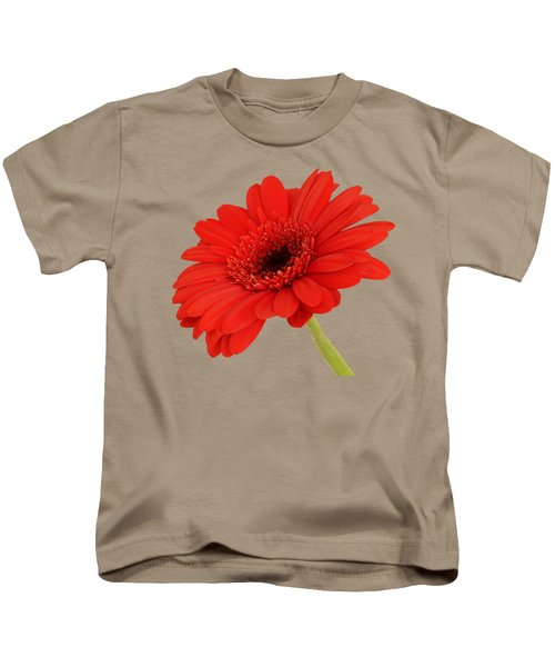 Red Gerbera Daisy 2 Kids T-Shirt by Scott Carruthers