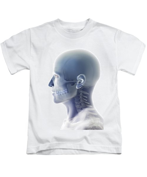 Bones Of The Head And Neck Kids T-Shirt