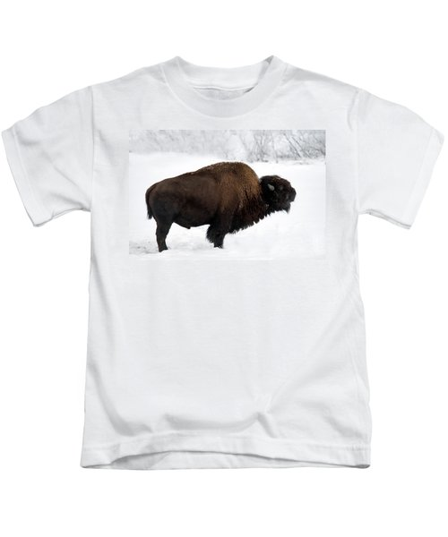 Plains Bison Kids T-Shirt
