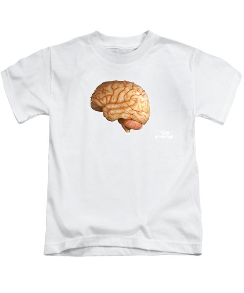 Human Brain Kids T-Shirt