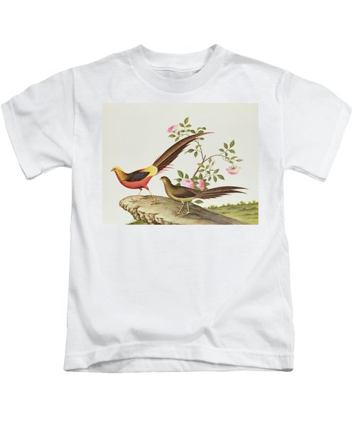 A Golden Pheasant Kids T-Shirt by Chinese School