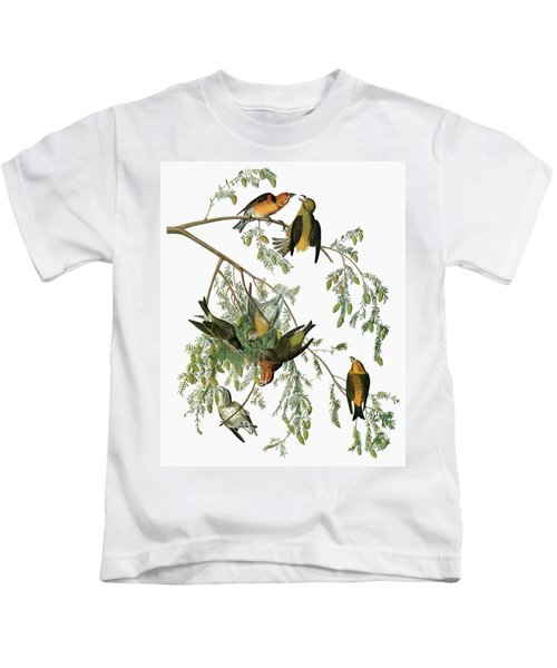 Audubon Crossbill Kids T-Shirt